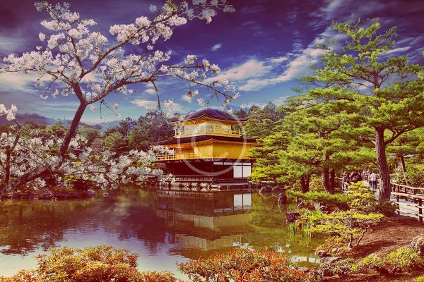 bigstock-gold-temple-japan-44883001.jpg
