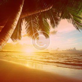 bigstock-sunrise-on-Caribbean-beach-41952856.jpg