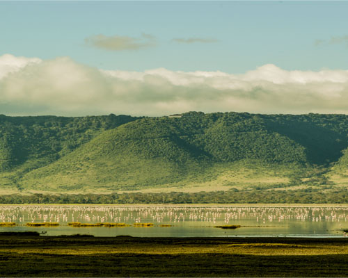 Ngorongoro 1